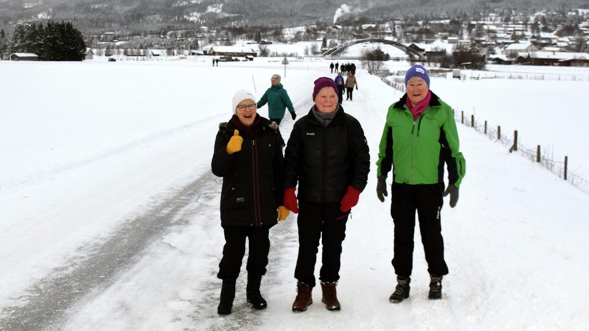 ALDRI SUR: Steinild Solvang, Kitty Gløtheim og Else Løkken storkoser seg på tur.