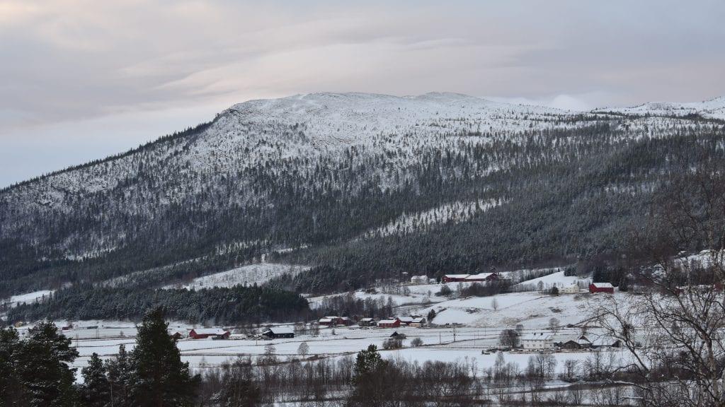 SÅ SA DET STOPP: Det er ikke lenge siden det kom en del snø i bygda, men den lå ikke lenge. Nå blir det ikke snø 1. desember i følge Yr. Foto: Torstein Sagbakken.