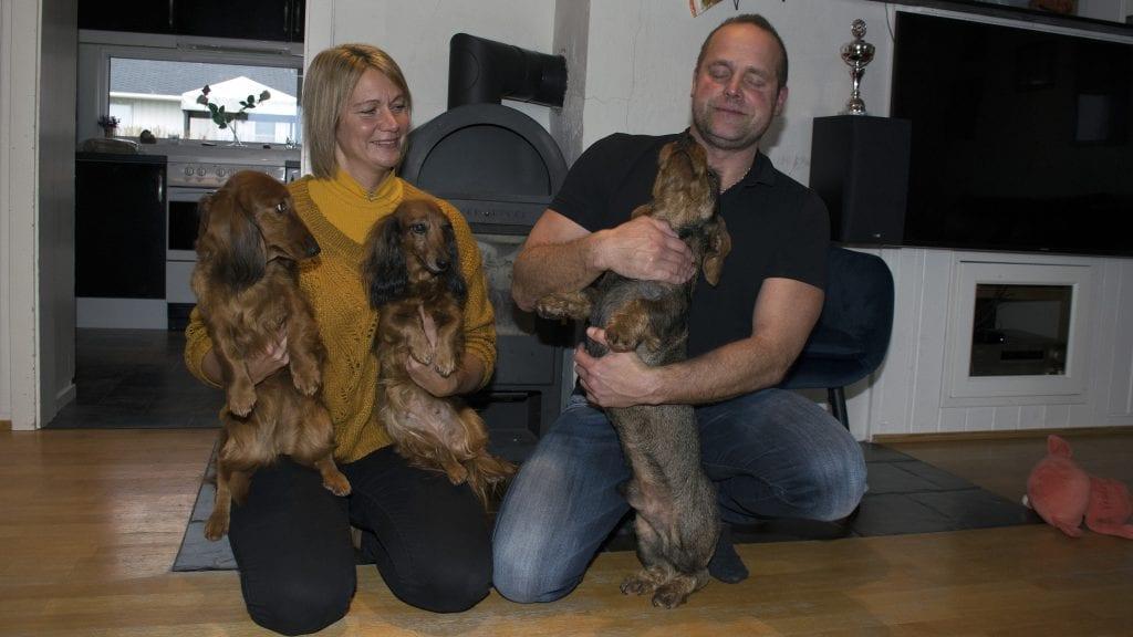 STORFAMILIEN: I tillegg til barna er dachsene en del av familien til Britt Steihaug og Rune Skogheim. Foto: Tore Rasmussen Steien