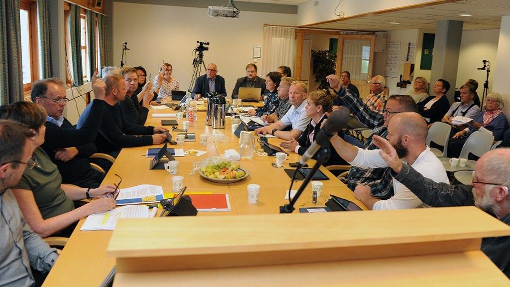 GJØR SOM HAN BLIR FORTALT: Når kommunestyret har stemt gjør rådmannen stort sett det han får beskjed om mener revisjonen. Foto: Ivar Thoresen