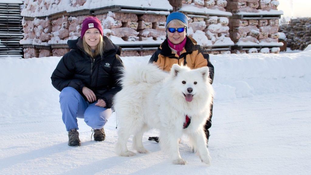VINTERHUND: Samojeden Zita er en skikkelig vinterhund, og stortrives i Tynset-kulda. Her er hun sammen med veterinær Silje Schärer (t.v.) og eier Randi Bredesen. Foto: Anne Skjøtskift