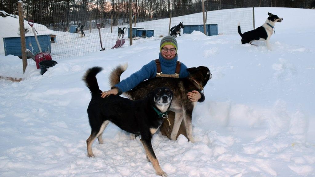 VIL DELE KOSEN: Olivia van Uytvanck og hundene stortrives i snøen og naturen i Alvdal og ønsker å gjøre det mulig for flere å oppleve det. Foto: Tore Rasmussen SteienVIL DELE KOSEN: Olivia van Uytvanck og hundene stortrives i snøen og naturen i Alvdal og ønsker å gjøre det mulig for flere å oppleve det. Foto: Tore Rasmussen Steien