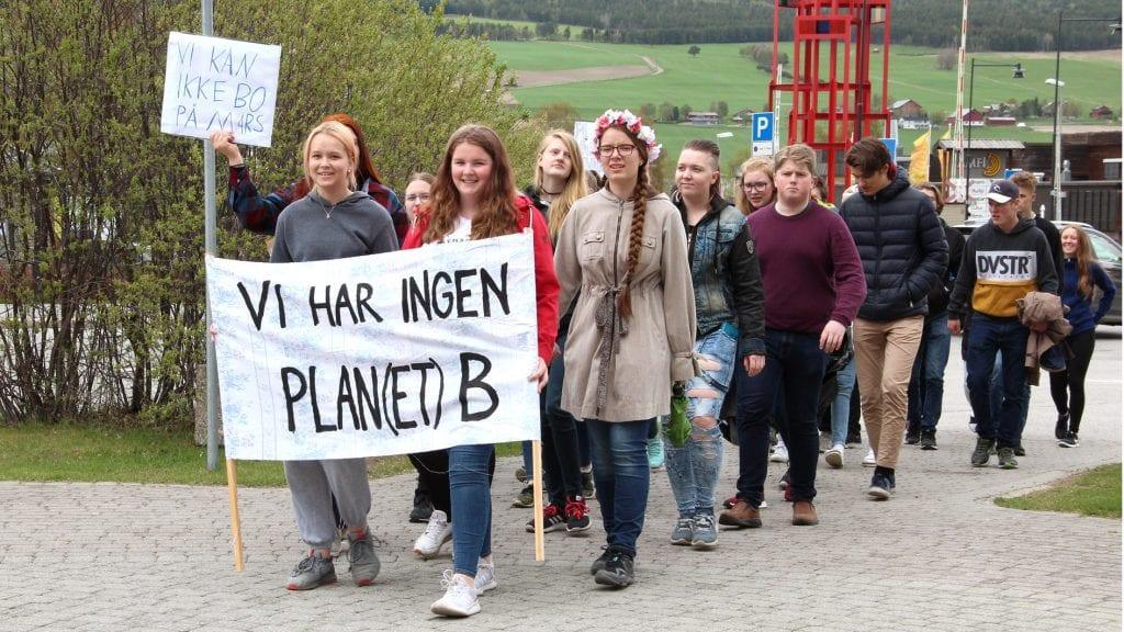 STREIK: Elever fra Nord-Østerdal videregående skole streiket for miljøet fredag. Vilde Schwenke Johnsbråten (med blomsterkrans) tok initiativ til markeringa på Tynset. Foto: Anne Skjøtskift