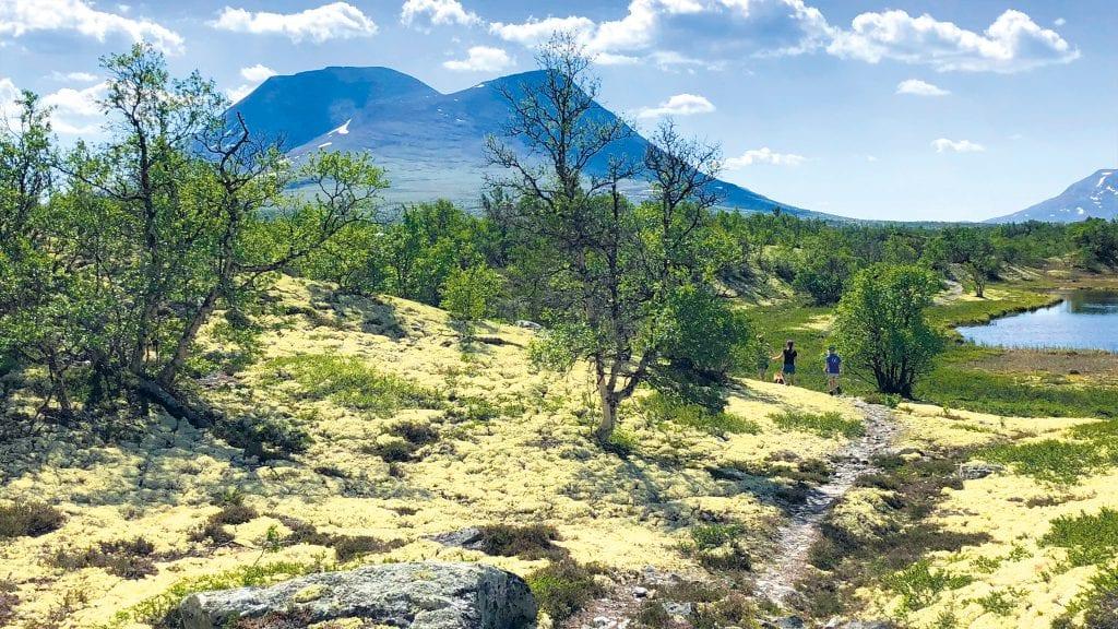 SOMMER I ALVDAL: Det er mye som skjer i Alvdal i sommer. I Sølndalen er det flotte turmuligheter. Foto: Ingrid Eggset