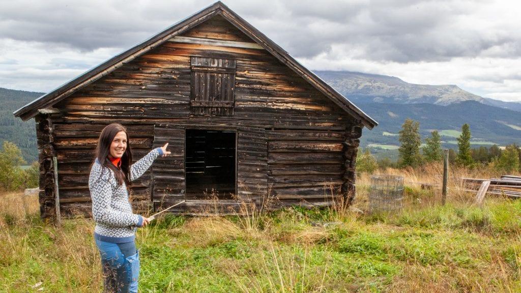 LØAS HEMMELIGHETER: Caroline Venstad har i løpet av høsten planer om å kartlegge tømmer og bruken av den eldre løa på Vordengsetra i Haustdalen. Foto: Lars Vingelsgård